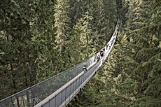 capilano-suspension-bridge-1393076_1920.