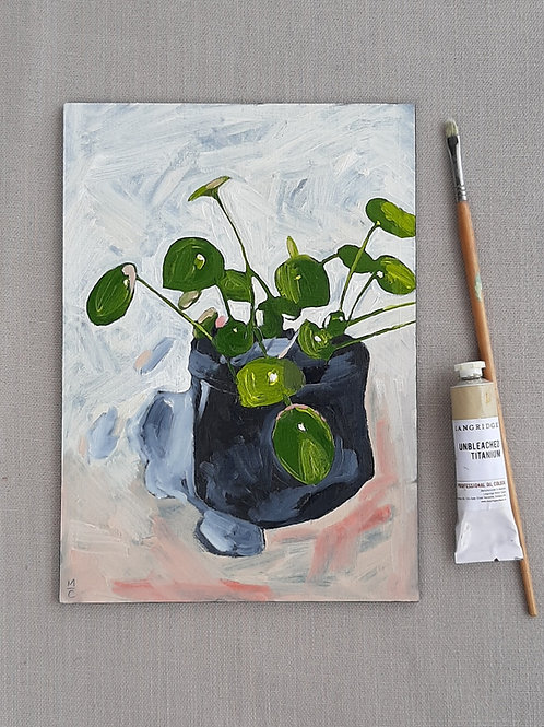 Money plant - original oil painting