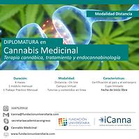 Flyer Cannabis Medicinal.png