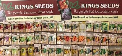 seeds%203_edited.jpg