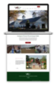 Punchestown-Site-Mockup.jpg
