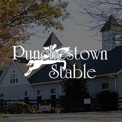 Punchestown-cover.jpg