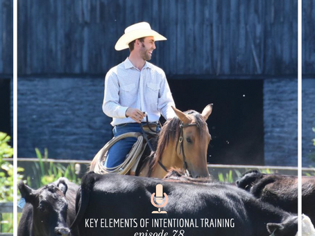 The Equestrian Podcast: Key Elements of Intentional Training