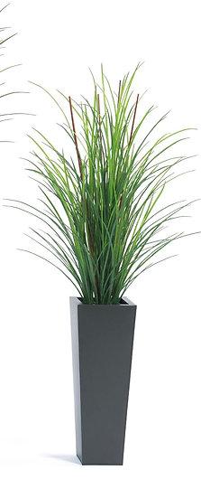 Green Grass & Bamboo