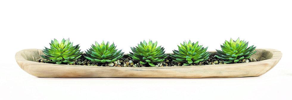Succulent & Natraz in Urn
