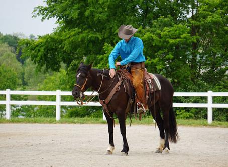 The Heart of Horsemanship Podcast: Past, Present, Future