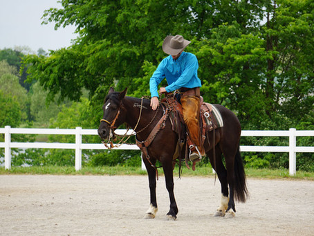 The Heart of Horsemanship Podcast: Past, Present, Future