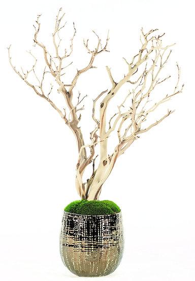 Manzanita Branches in Bronze