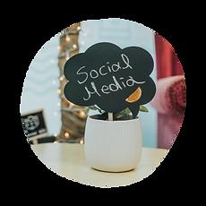 Social Media Management and Social Media