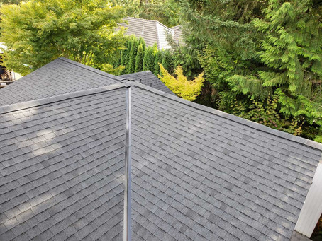 Small Steps to Make your Roof Eco-Friendly