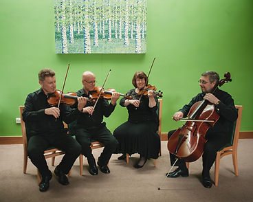 David Bennet Violin