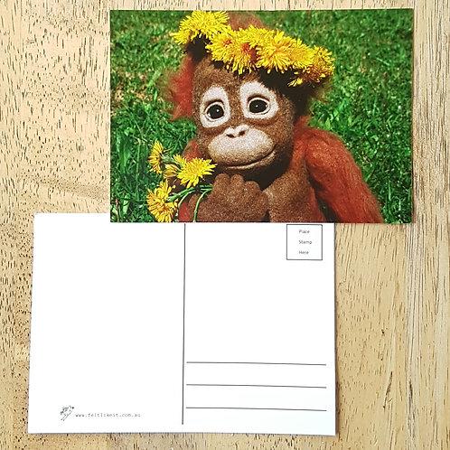 Ida Postcard