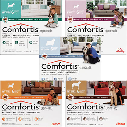 Comfortis - Dogs & Cats