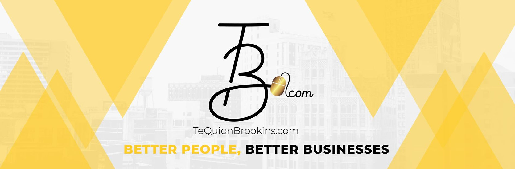 tequionbrookins.com virtual consulting for startups and nonprofits