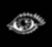 eye website.png