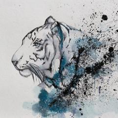 Hahnemuhle Tigre.jpg
