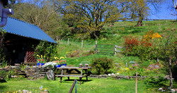picnic_table_visiit_pembs