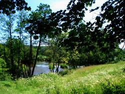 spring_field_river_teifi_fishing