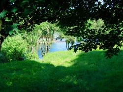 spring_field_river_teifi_fishing(2)