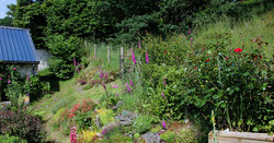 back_garden_fishing_in_wales