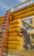 Staining log addition