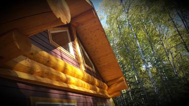 Pine t&g eaves
