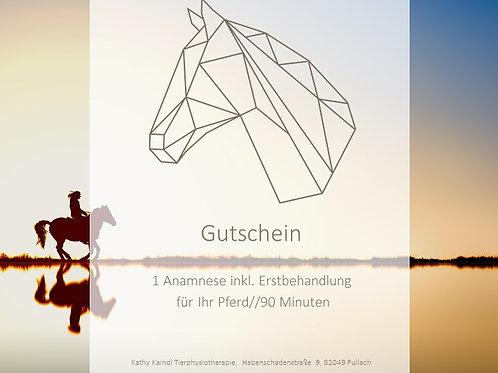 """Gutschein """"Anamnese inkl. Erstbehandlung für Ihr Pferd (90 Min.)"""