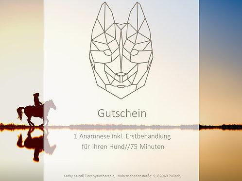 """Gutschein """"Anamnese inkl. Erstbehandlung für Ihren Hund (1 Std. 15 Min.)"""