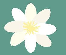 logo_valkoinen_kukka
