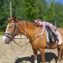 hevonen_dolli_ratsastus_elämys_valkoinen