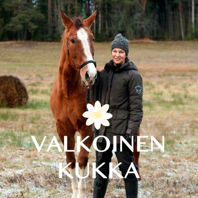 hevoset_dolli_mervi_valkoinen_kukka