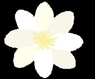 logo valkoinen_kukka