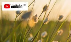 Accédez à notre chaîne YouTube