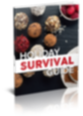 HolidaySurvivalGuideCover-3D.png