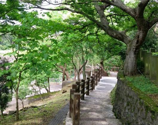 貓貍山公園步道