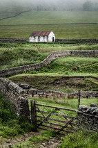 Fields & Barns & Walls, Teesdale