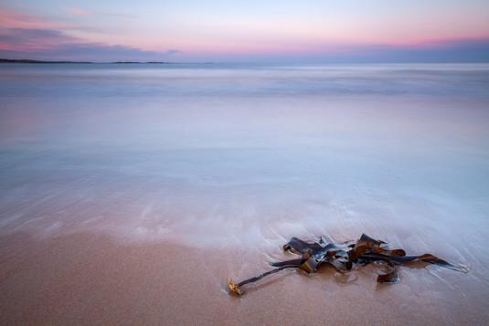 Incoming, Tide, Embleton Bay, Northumber
