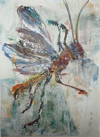 2012_Insekt_12.jpg