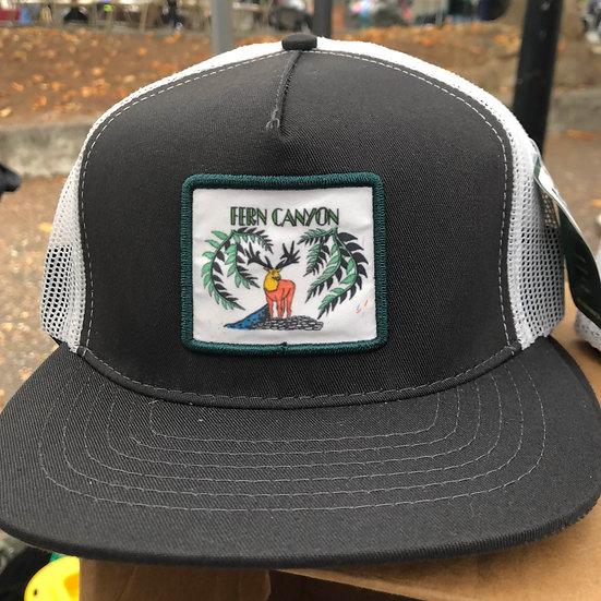 Fern Canyon Trucker