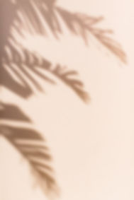 Palm_Beach_Travel_Guide_—_Abby_Capalbo