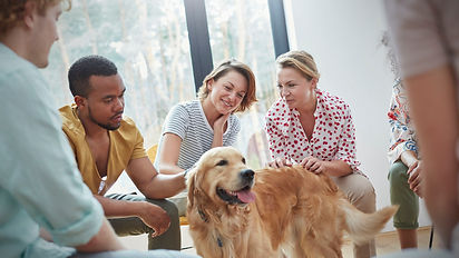 people-petting-dog-in-group-therapy-sess