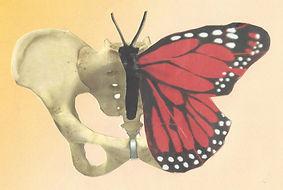 Schmetterlingsbecken_klein.jpg