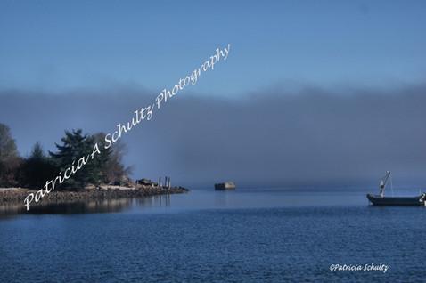 Foggy Afternoon