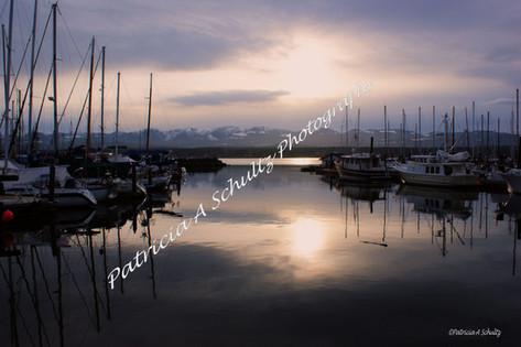 Evening Light on Comox Marina