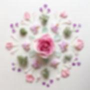 5d3c94b8b26c81fb98a00e5e1c99ecca--flower