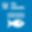 S_SDG-goals_icons-individual-rgb-14.png