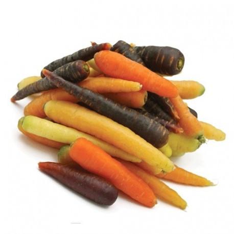 Mini-carottes