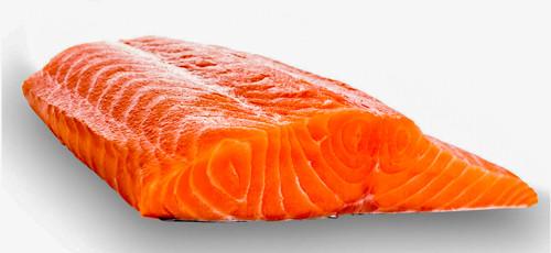 filets de saumon sauvage