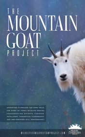 Mountain Goat Project