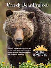 Grizzly_poster.jpg